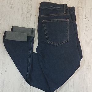 Current/Elliot The Skinny Souvenir Skinny Jeans